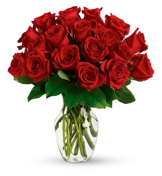 Why Roses are Romantic