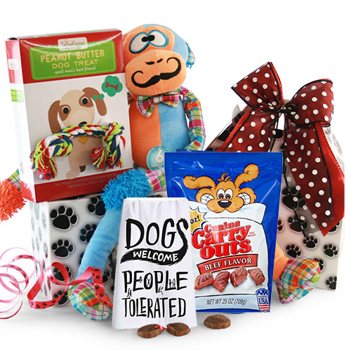 Christmas Gift Ideas for Pets Dogs
